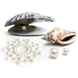 Mini perle BIJOUX